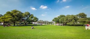 Things to do in Creek Park Dubai