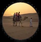 camel ride icon